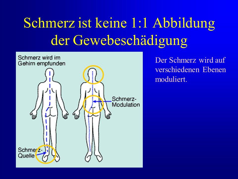Schmerz ist keine 1:1 Abbildung der Gewebeschädigung Der Schmerz wird auf verschiedenen Ebenen moduliert.
