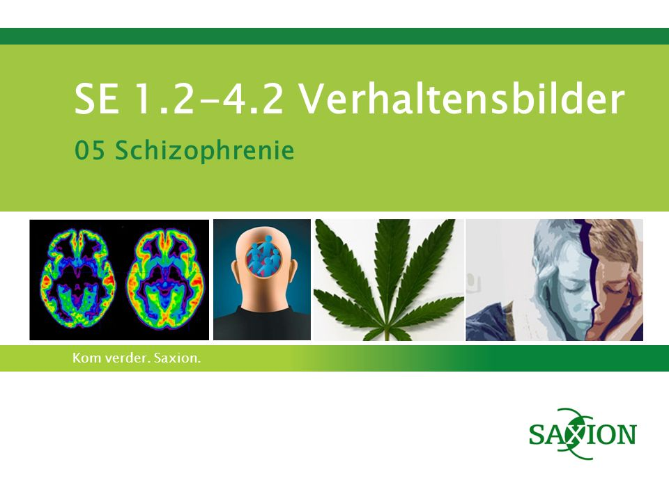 Kom verder. Saxion. SE 1.2-4.2 Verhaltensbilder 05 Schizophrenie