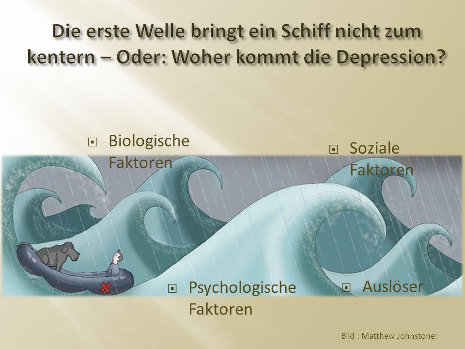  Biologische Faktoren  Psychologische Faktoren  Soziale Faktoren  Auslöser Bild : Matthew Johnstone: