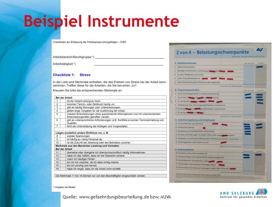 Beispiel Instrumente Quelle: www.gefaehrdungsbeurteilung.de bzw. AUVA