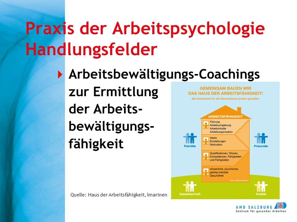 Praxis der Arbeitspsychologie Handlungsfelder  Arbeitsbewältigungs-Coachings zur Ermittlung der Arbeits- bewältigungs- fähigkeit Quelle: Haus der Arbeitsfähigkeit, lmarinen