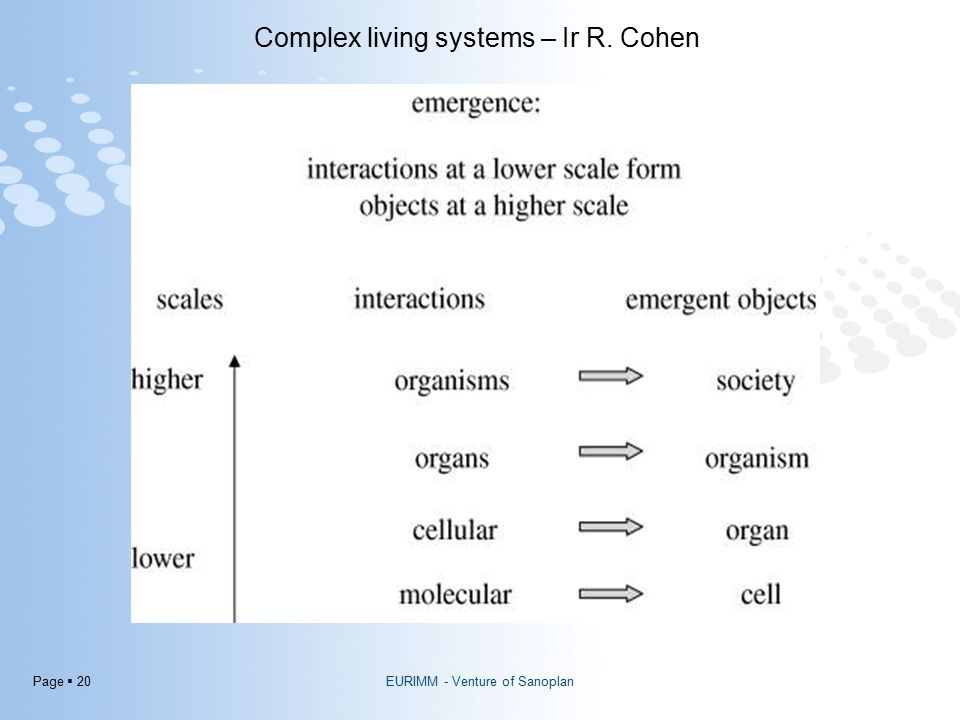 Page  20 EURIMM - Venture of Sanoplan Complex living systems – Ir R. Cohen