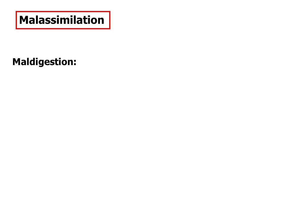 Malassimilation Maldigestion: