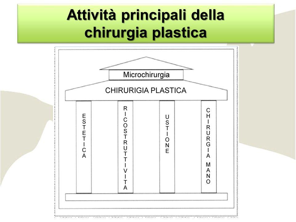 Attività principali della chirurgia plastica