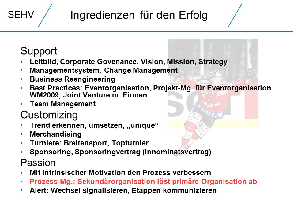 SEHV Ingredienzen für den Erfolg Support Leitbild, Corporate Govenance, Vision, Mission, Strategy Managementsystem, Change Management Business Reengineering Best Practices: Eventorganisation, Projekt-Mg.
