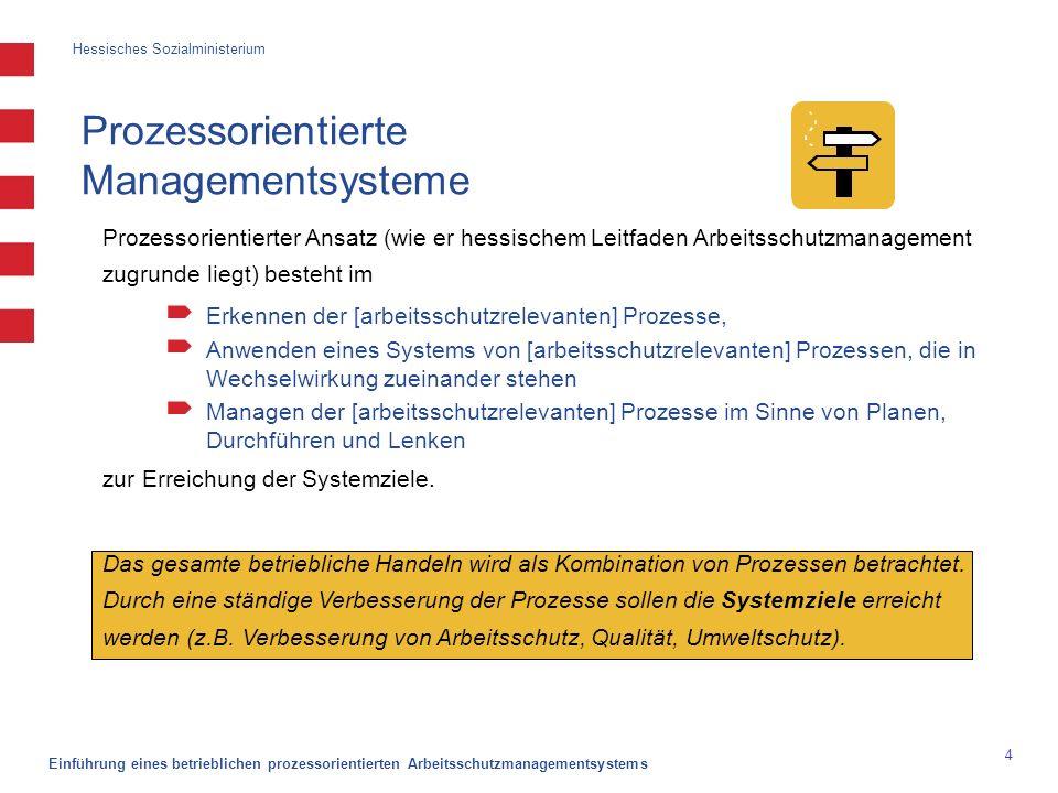 """Hessisches Sozialministerium Einführung eines betrieblichen prozessorientierten Arbeitsschutzmanagementsystems 15 Vorgehen zum Identifizieren und Beschreiben der Verfahren und Prozesse wer?-""""Prozessinhaber ."""