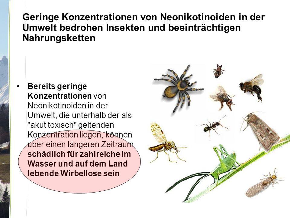 Geringe Konzentrationen von Neonikotinoiden in der Umwelt bedrohen Insekten und beeinträchtigen Nahrungsketten Bereits geringe Konzentrationen von Neonikotinoiden in der Umwelt, die unterhalb der als akut toxisch geltenden Konzentration liegen, können über einen längeren Zeitraum schädlich für zahlreiche im Wasser und auf dem Land lebende Wirbellose sein