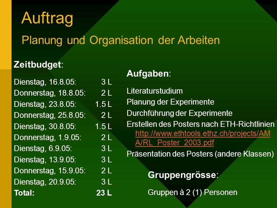 Auftrag Planung und Organisation der Arbeiten Zeitbudget: Dienstag, 16.8.05:3 L Donnerstag, 18.8.05:2 L Dienstag, 23.8.05:1.5 L Donnerstag, 25.8.05:2