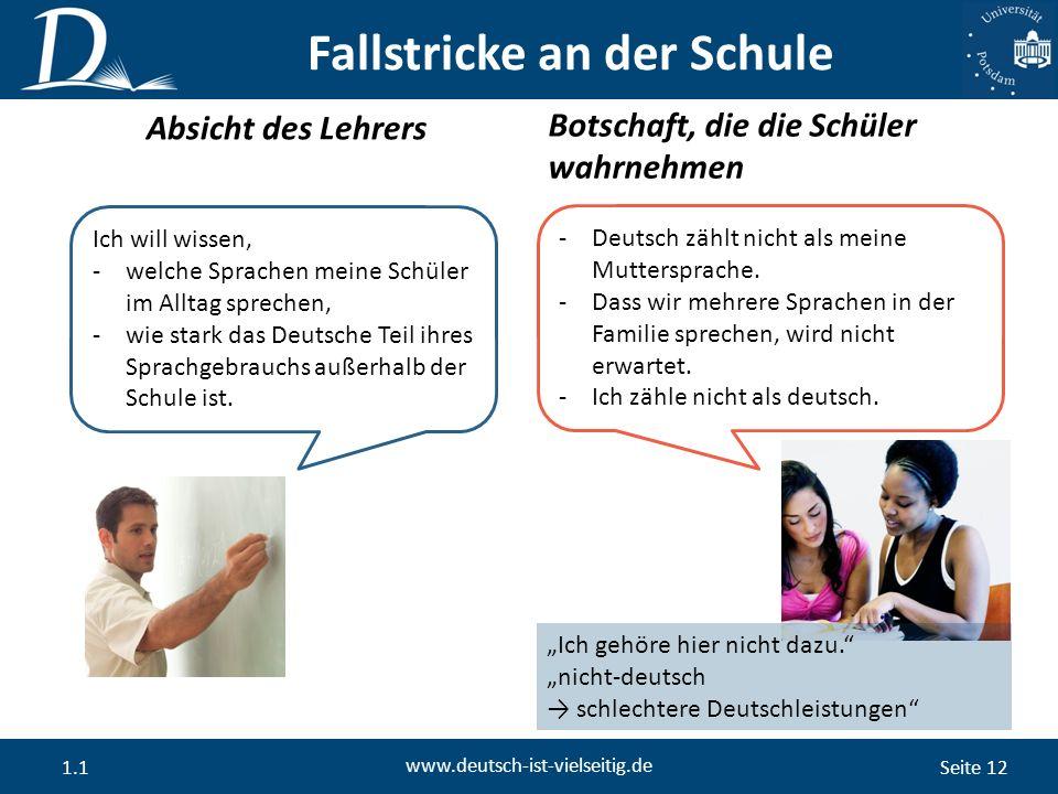 Seite 12 www.deutsch-ist-vielseitig.de 1.1 Absicht des Lehrers Botschaft, die die Schüler wahrnehmen Fallstricke an der Schule Ich will wissen, -welche Sprachen meine Schüler im Alltag sprechen, -wie stark das Deutsche Teil ihres Sprachgebrauchs außerhalb der Schule ist.