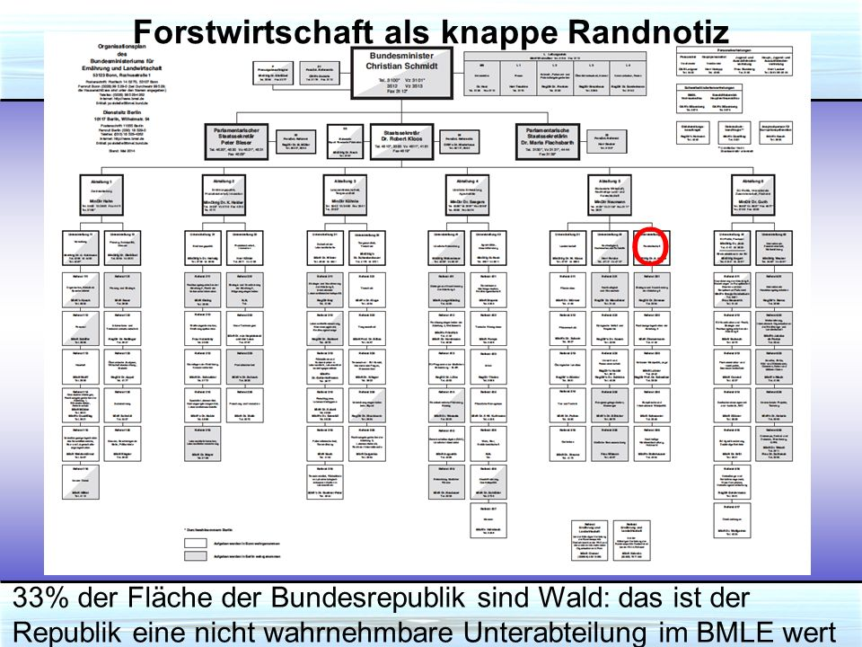 Forstwirtschaft als knappe Randnotiz O 33% der Fläche der Bundesrepublik sind Wald: das ist der Republik eine nicht wahrnehmbare Unterabteilung im BMLE wert