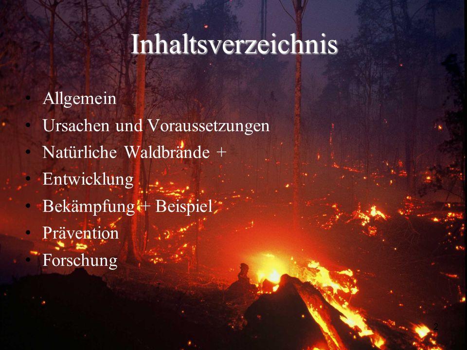 2 Inhaltsverzeichnis Allgemein Ursachen und Voraussetzungen Natürliche Waldbrände + Entwicklung Bekämpfung + Beispiel Prävention Forschung