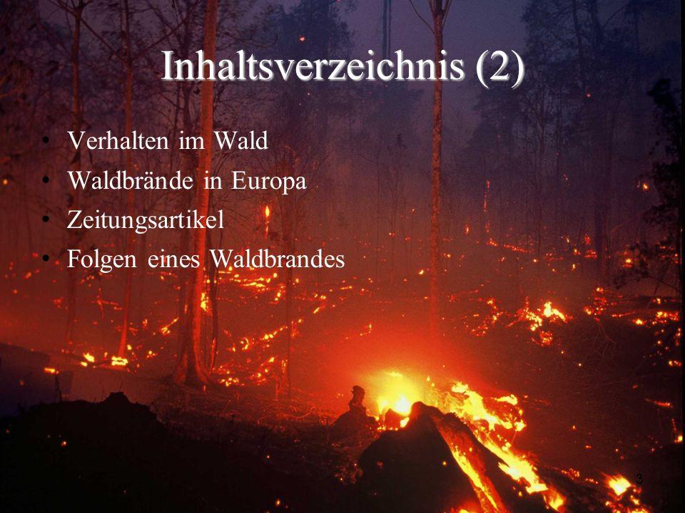 3 Inhaltsverzeichnis (2) Verhalten im Wald Waldbrände in Europa Zeitungsartikel Folgen eines Waldbrandes