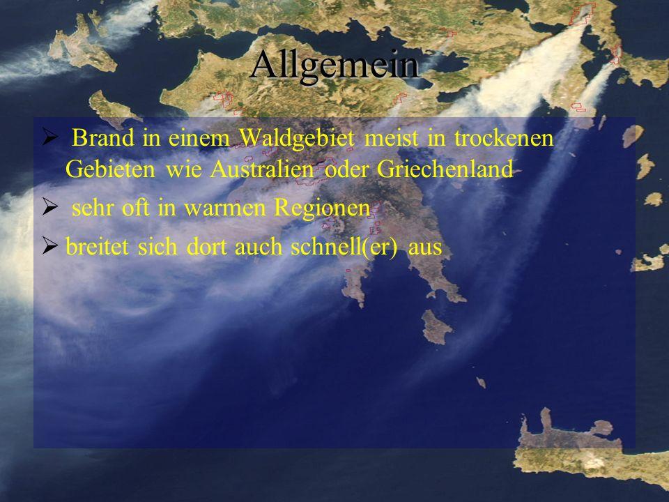 25 Quellen http://de.wikipedia.org/wiki/Waldbrand (15.12.09)http://de.wikipedia.org/wiki/Waldbrand http://www.klimaforschung.net/waldbraende/index.htm (15.12.09)http://www.klimaforschung.net/waldbraende/index.htm http://www.tagesschau.de/ausland/braende116.html (15.12.09)http://www.tagesschau.de/ausland/braende116.html http://www.einsatz-netz.de/fachwissen/fachartikel/brandschutz- vorbeugend/flammenmelder-aus-dem-reich-der-kafer/ (15.12.09)http://www.einsatz-netz.de/fachwissen/fachartikel/brandschutz- vorbeugend/flammenmelder-aus-dem-reich-der-kafer/ http://www.geocaching.de/index.php?id=14 (26.1.10) http://www.waldwissen.net/themen/naturgefahren/wsl_erosion_nach_ waldbrand_DE (26.1.10)http://www.waldwissen.net/themen/naturgefahren/wsl_erosion_nach_ waldbrand_DE