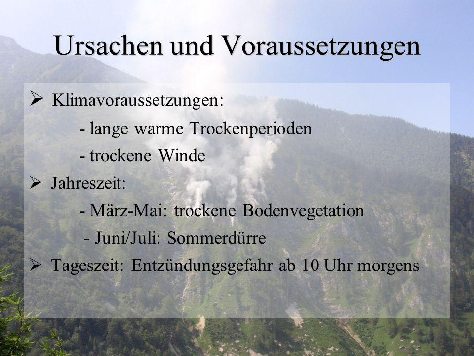 www.fire.uni-freiburg.de
