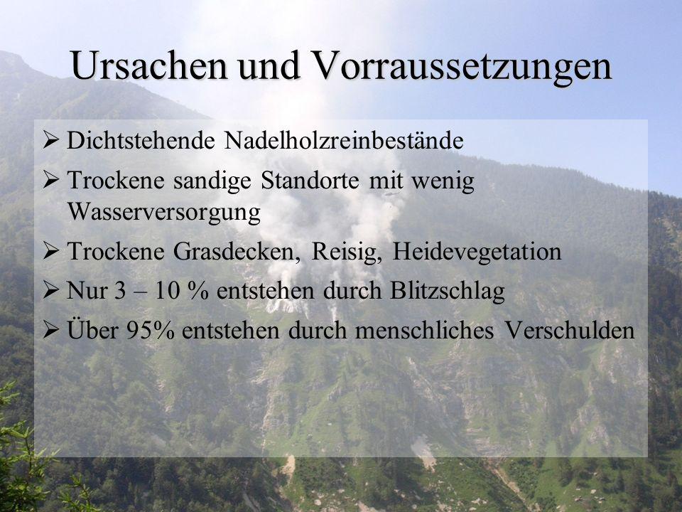 Forschung  Einzige Forschungsstelle in Europa: Global Fire Monitoring Center in Freiburg im Breisgau  Leiter: Johann Georg Goldammer  Aufgaben: - Sammlung von zusammenhängenden Daten mit Waldbrände - Entwicklung von Strategien zur Waldbrandbekämpfung