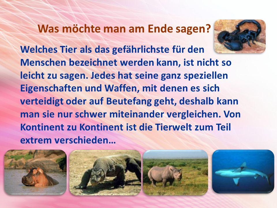 Welches Tier als das gefährlichste für den Menschen bezeichnet werden kann, ist nicht so leicht zu sagen.