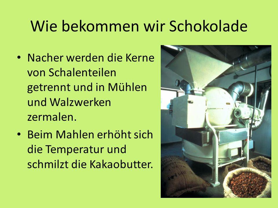 Wie bekommen wir Schokolade Nacher werden die Kerne von Schalenteilen getrennt und in Mühlen und Walzwerken zermalen.