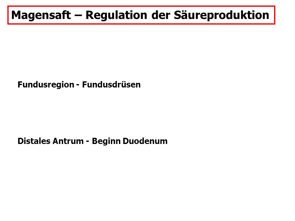 Magensaft – Regulation der Säureproduktion Fundusregion - Fundusdrüsen Distales Antrum - Beginn Duodenum