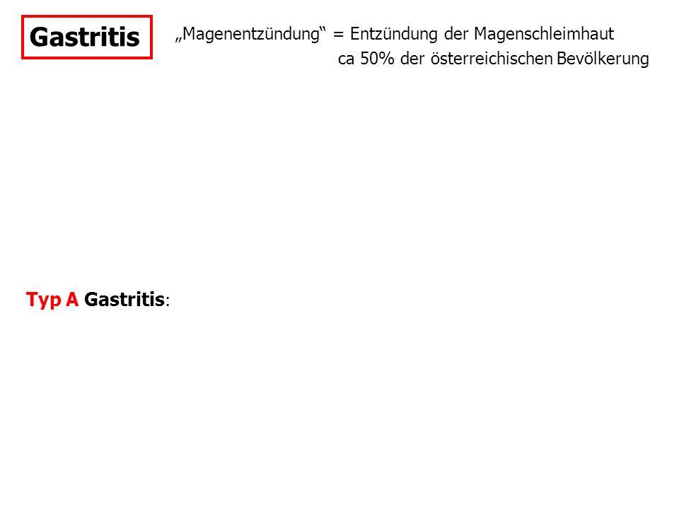 """Gastritis """"Magenentzündung"""" = Entzündung der Magenschleimhaut Typ A Gastritis : ca 50% der österreichischen Bevölkerung"""