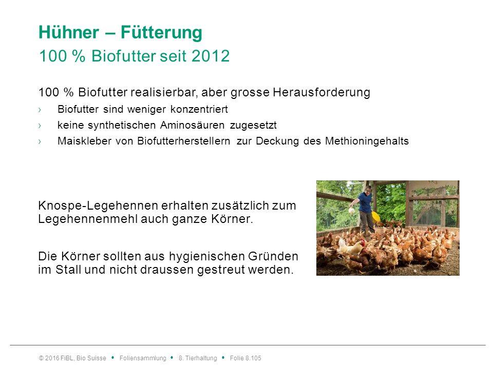 Hühner – Fütterung 100 % Biofutter seit 2012 100 % Biofutter realisierbar, aber grosse Herausforderung ›Biofutter sind weniger konzentriert ›keine syn