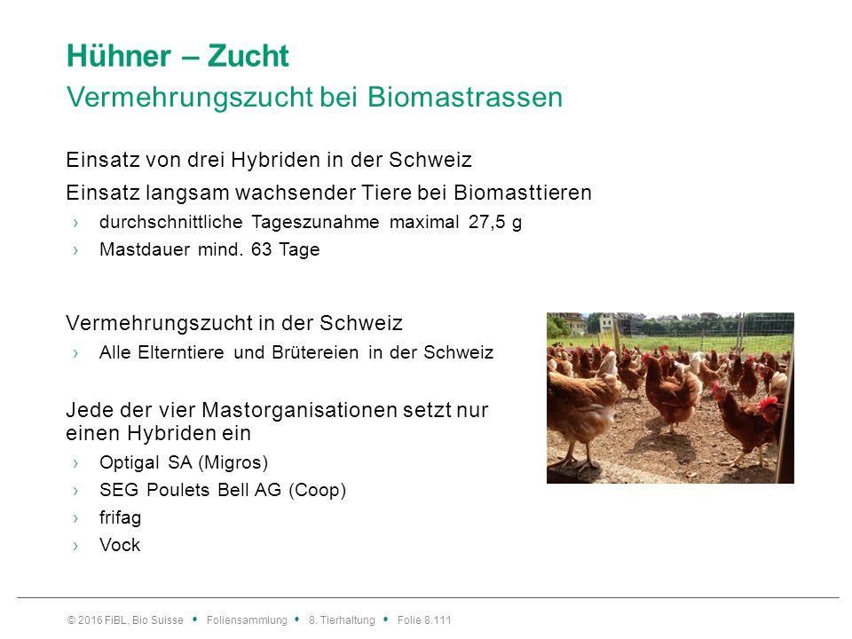 Hühner – Zucht Vermehrungszucht bei Biomastrassen Einsatz von drei Hybriden in der Schweiz Einsatz langsam wachsender Tiere bei Biomasttieren ›durchsc