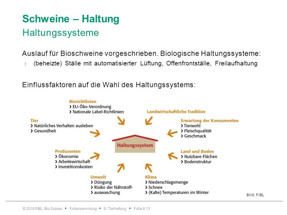 Schweine – Haltung Haltungssysteme Auslauf für Bioschweine vorgeschrieben. Biologische Haltungssysteme: ›(beheizte) Ställe mit automatisierter Lüftung