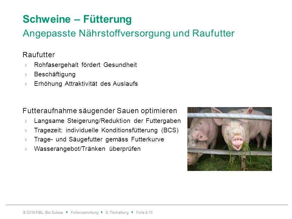 Schweine – Fütterung Angepasste Nährstoffversorgung und Raufutter Raufutter ›Rohfasergehalt fördert Gesundheit ›Beschäftigung ›Erhöhung Attraktivität