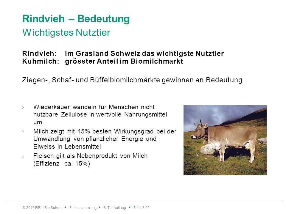 Rindvieh – Bedeutung Wichtigstes Nutztier Rindvieh: im Grasland Schweiz das wichtigste Nutztier Kuhmilch: grösster Anteil im Biomilchmarkt Ziegen-, Sc