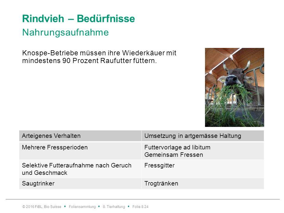 Rindvieh – Bedürfnisse Nahrungsaufnahme Knospe-Betriebe müssen ihre Wiederkäuer mit mindestens 90 Prozent Raufutter füttern. © 2016 FiBL, Bio Suisse F