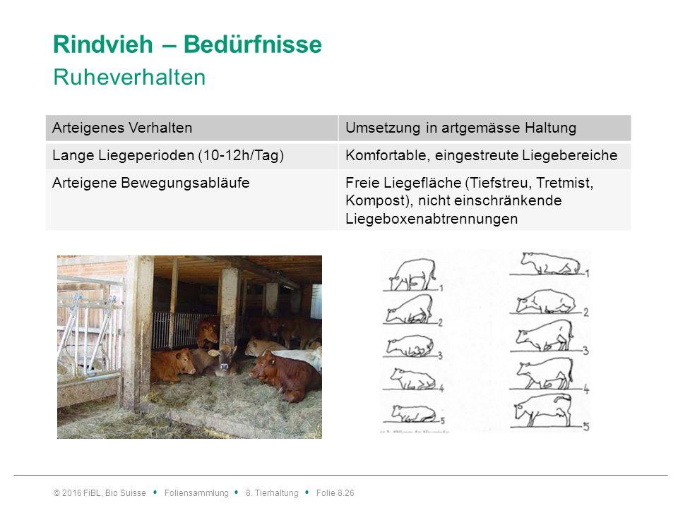 Rindvieh – Bedürfnisse Ruheverhalten © 2016 FiBL, Bio Suisse Foliensammlung 8. Tierhaltung Folie 8.26 Arteigenes VerhaltenUmsetzung in artgemässe Halt