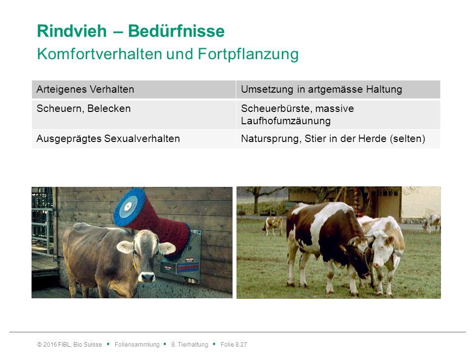 Rindvieh – Bedürfnisse Komfortverhalten und Fortpflanzung © 2016 FiBL, Bio Suisse Foliensammlung 8. Tierhaltung Folie 8.27 Arteigenes VerhaltenUmsetzu