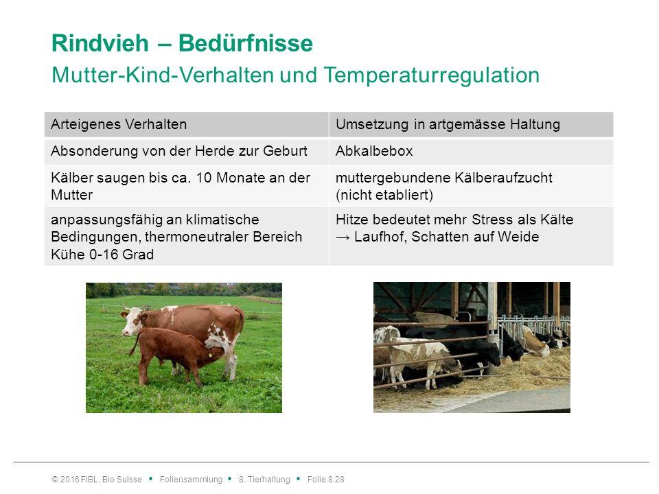 Rindvieh – Bedürfnisse Mutter-Kind-Verhalten und Temperaturregulation © 2016 FiBL, Bio Suisse Foliensammlung 8. Tierhaltung Folie 8.28 Arteigenes Verh