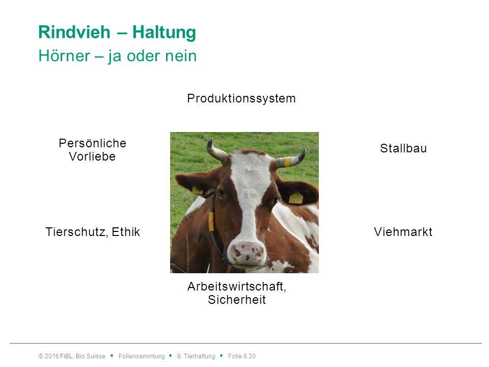Rindvieh – Haltung Hörner – ja oder nein © 2016 FiBL, Bio Suisse Foliensammlung 8. Tierhaltung Folie 8.30 Produktionssystem Arbeitswirtschaft, Sicherh
