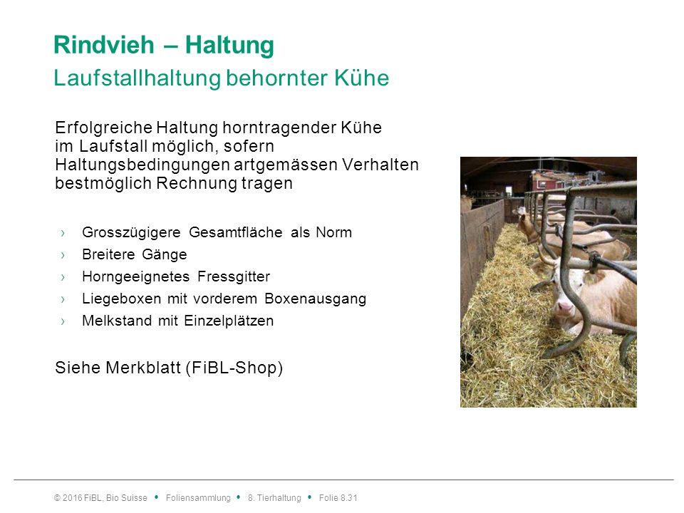 Rindvieh – Haltung Laufstallhaltung behornter Kühe Erfolgreiche Haltung horntragender Kühe im Laufstall möglich, sofern Haltungsbedingungen artgemässe