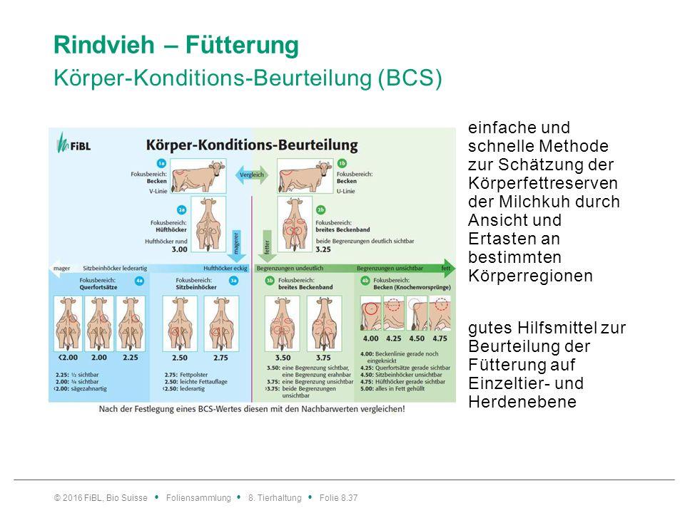 Rindvieh – Fütterung Körper-Konditions-Beurteilung (BCS) einfache und schnelle Methode zur Schätzung der Körperfettreserven der Milchkuh durch Ansicht