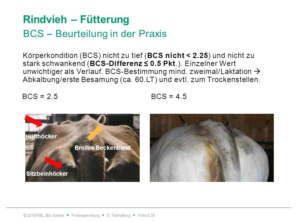 Rindvieh – Fütterung BCS – Beurteilung in der Praxis Körperkondition (BCS) nicht zu tief (BCS nicht < 2.25) und nicht zu stark schwankend (BCS-Differe