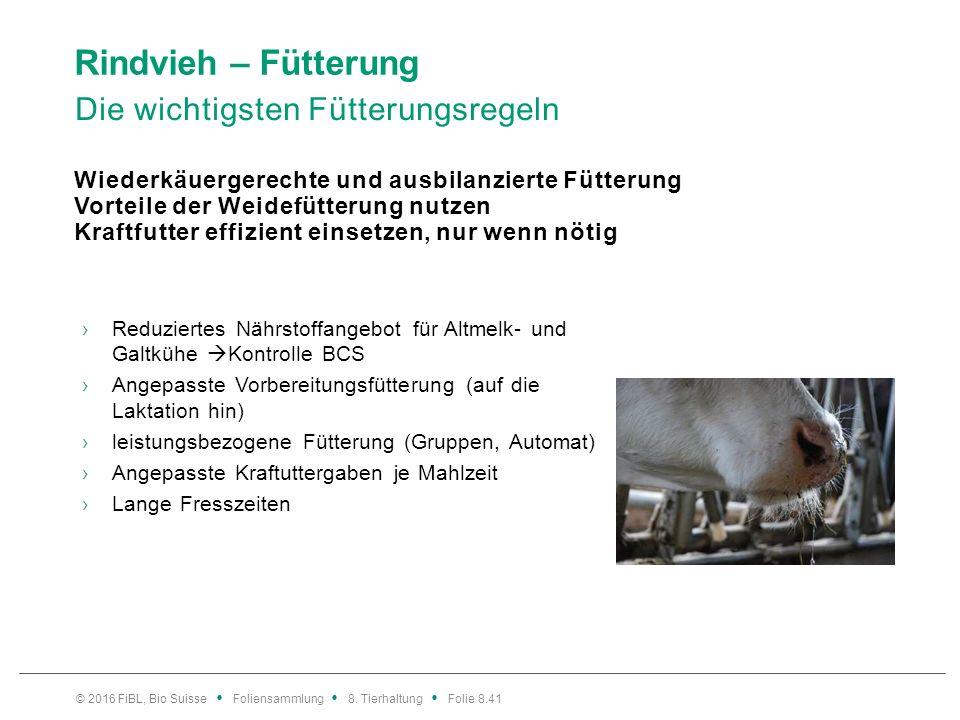 Rindvieh – Fütterung Die wichtigsten Fütterungsregeln Wiederkäuergerechte und ausbilanzierte Fütterung Vorteile der Weidefütterung nutzen Kraftfutter