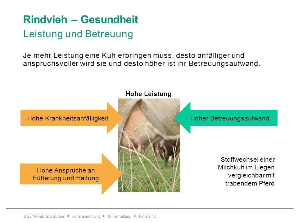 Rindvieh – Gesundheit Leistung und Betreuung Je mehr Leistung eine Kuh erbringen muss, desto anfälliger und anspruchsvoller wird sie und desto höher i
