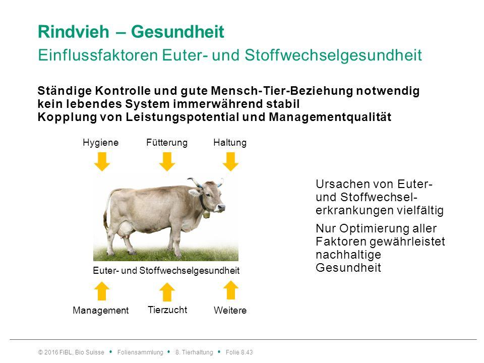 Rindvieh – Gesundheit Einflussfaktoren Euter- und Stoffwechselgesundheit Ständige Kontrolle und gute Mensch-Tier-Beziehung notwendig kein lebendes Sys