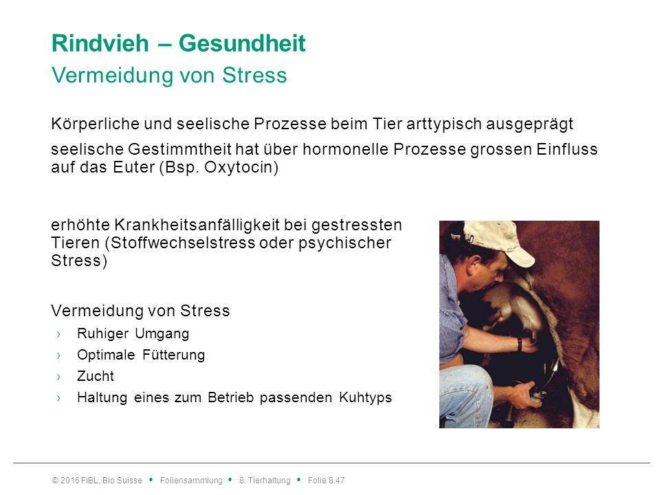 Rindvieh – Gesundheit Vermeidung von Stress Körperliche und seelische Prozesse beim Tier arttypisch ausgeprägt seelische Gestimmtheit hat über hormone