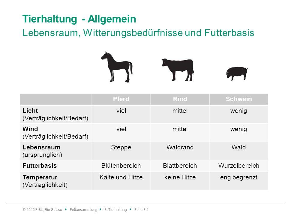 Tierhaltung - Allgemein Lebensraum, Witterungsbedürfnisse und Futterbasis © 2016 FiBL, Bio Suisse Foliensammlung 8. Tierhaltung Folie 8.5 PferdRindSch