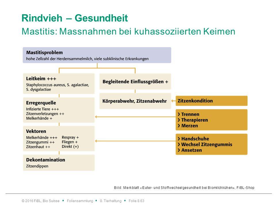 Rindvieh – Gesundheit Mastitis: Massnahmen bei kuhassoziierten Keimen Bild: Merkblatt «Euter- und Stoffwechselgesundheit bei Biomilchkühen», FiBL-Shop