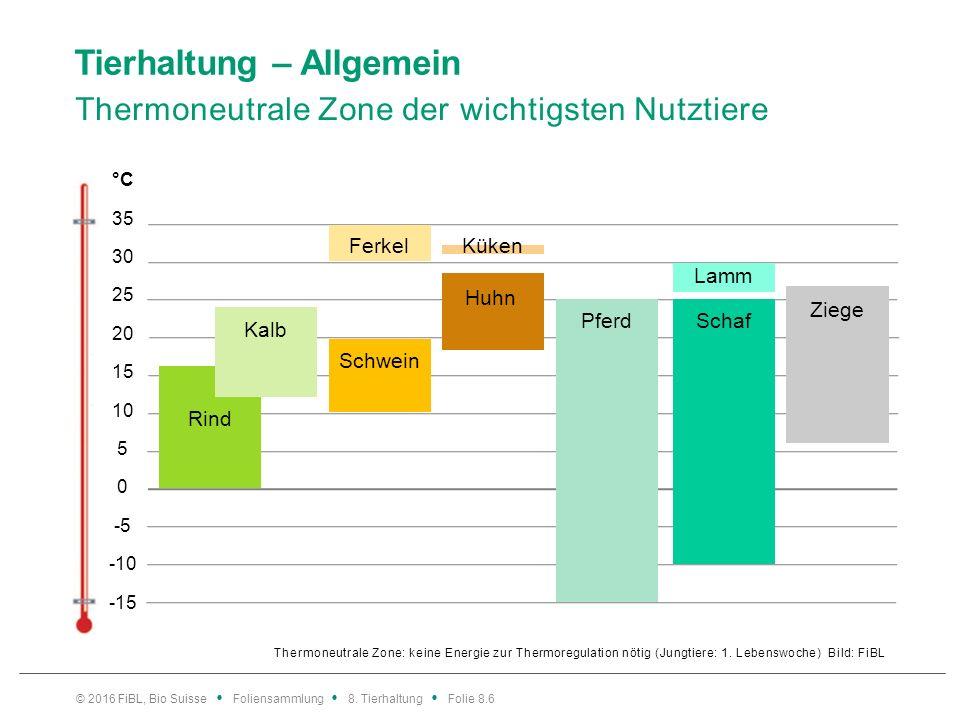 Tierhaltung – Allgemein Thermoneutrale Zone der wichtigsten Nutztiere Thermoneutrale Zone: keine Energie zur Thermoregulation nötig (Jungtiere: 1. Leb
