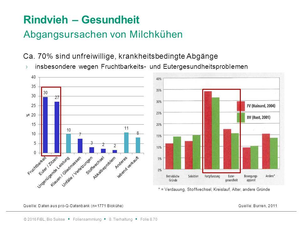 Rindvieh – Gesundheit Abgangsursachen von Milchkühen Quelle: Burren, 2011 © 2016 FiBL, Bio Suisse Foliensammlung 8. Tierhaltung Folie 8.70 Ca. 70% sin