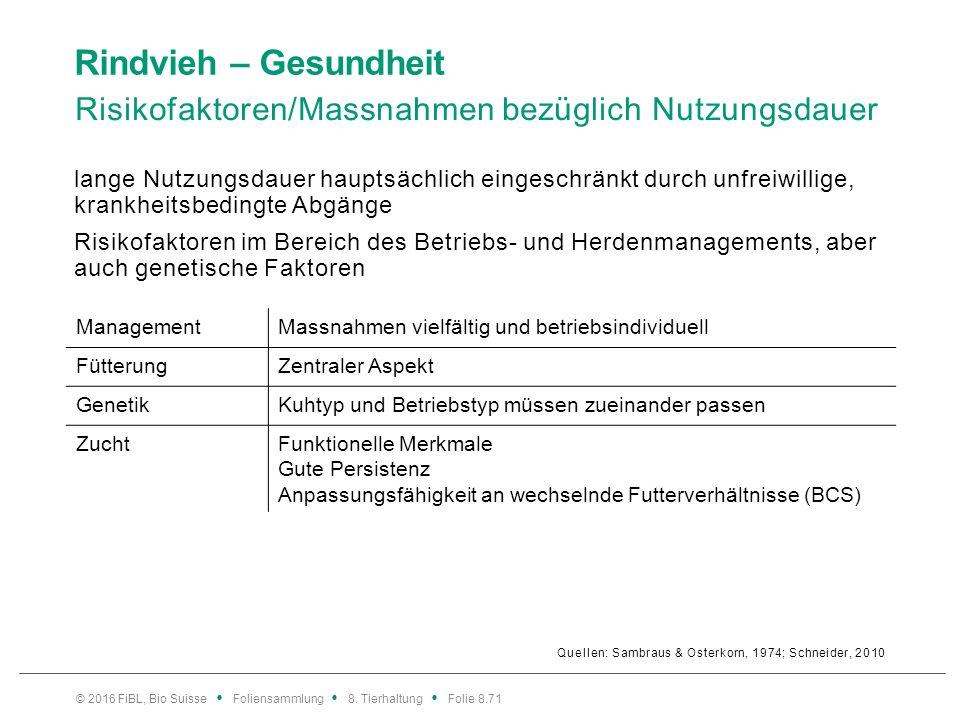 Rindvieh – Gesundheit Risikofaktoren/Massnahmen bezüglich Nutzungsdauer Quellen: Sambraus & Osterkorn, 1974; Schneider, 2010 lange Nutzungsdauer haupt