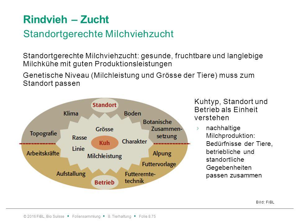Rindvieh – Zucht Standortgerechte Milchviehzucht Bild: FiBL © 2016 FiBL, Bio Suisse Foliensammlung 8. Tierhaltung Folie 8.75 Standortgerechte Milchvie