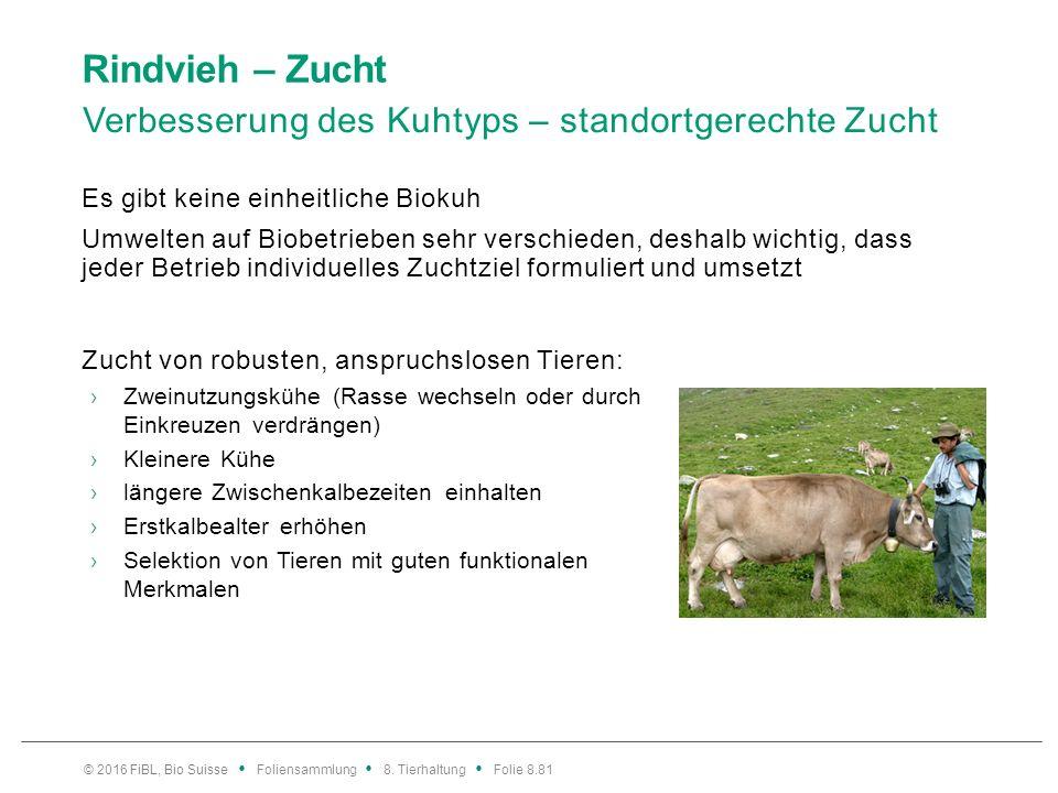 Rindvieh – Zucht Verbesserung des Kuhtyps – standortgerechte Zucht Es gibt keine einheitliche Biokuh Umwelten auf Biobetrieben sehr verschieden, desha