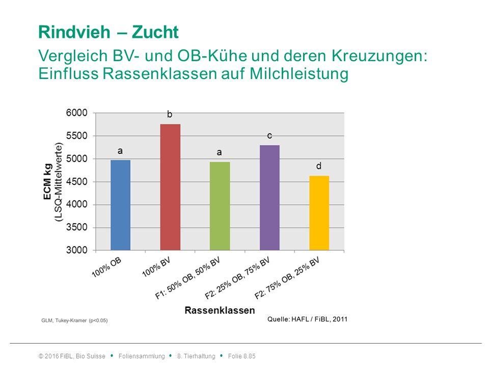 Rindvieh – Zucht Vergleich BV- und OB-Kühe und deren Kreuzungen: Einfluss Rassenklassen auf Milchleistung © 2016 FiBL, Bio Suisse Foliensammlung 8. Ti