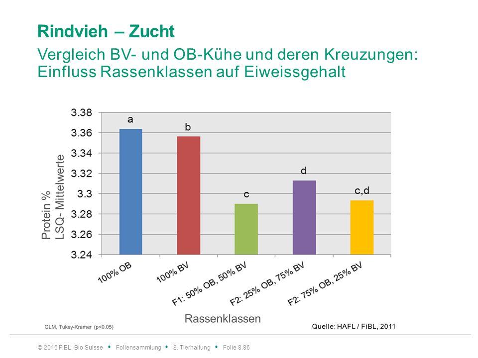Rindvieh – Zucht Vergleich BV- und OB-Kühe und deren Kreuzungen: Einfluss Rassenklassen auf Eiweissgehalt © 2016 FiBL, Bio Suisse Foliensammlung 8. Ti