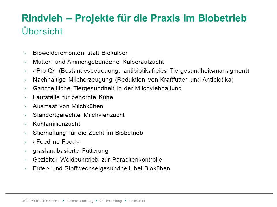 Rindvieh – Projekte für die Praxis im Biobetrieb Übersicht ›Bioweideremonten statt Biokälber ›Mutter- und Ammengebundene Kälberaufzucht ›«Pro-Q» (Best